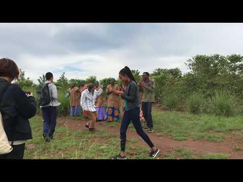 welcome dance@coffee farm, Rwanda
