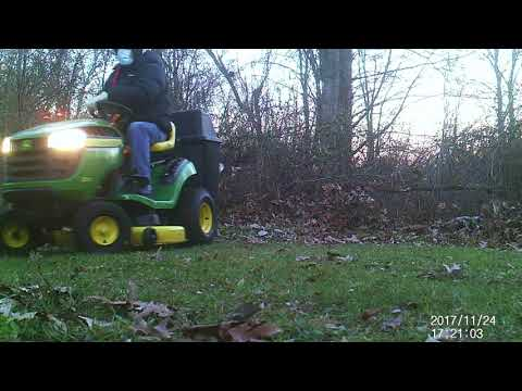 Backyard Wildlife Camera NH late Nov. 2017