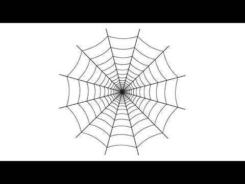 How to draw a spider web in adobe illustrator youtube for Easy drawing websites