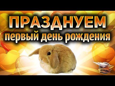 Кролику Селёде исполнился 1 годик - Поздравляем пушистика + РОЗЫГРЫШ КОРОБОК