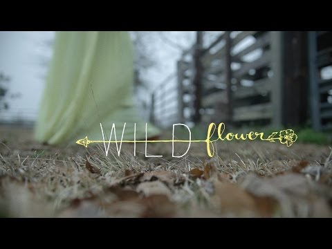 Wildflower / A Proposal