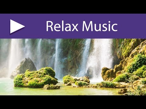 Music Zen Relaxation Nature: Nature Sounds Relaxing Music, Ambient Music Rainforest Sounds Birds