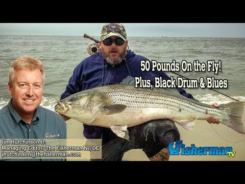 May 9, 2019 New Jersey/Delaware Bay Fishing Report With Jim Hutchinson, Jr.