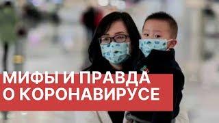 Что важно знать о вирусе в Китае. Мифы и правда о коронавирусе. Последние новости о вирусе 2020