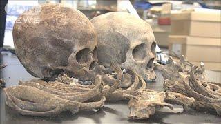 都内で見つかる人骨に収蔵庫建設へ 1.3億円計上(19/12/23)