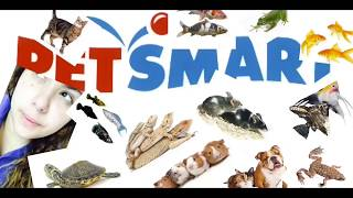 A day in the life of a petsmart worker!