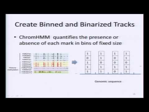 Learning Chromatin States from ChIP-seq Data: ChromHMM - Luca Pinello