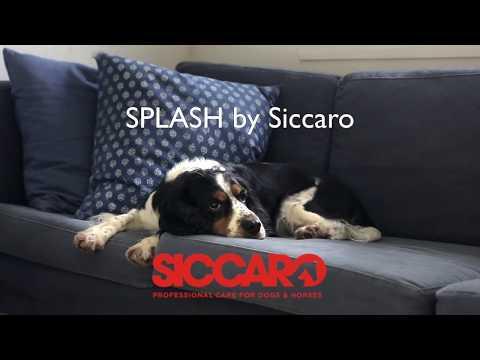 How to use SPLASH - Dog Drying Coat by Siccaro