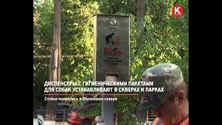 КРТВ. Диспенсеры с гигиеническими пакетами для собак устанавливают в скверах и парках