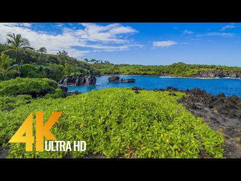 Maui Island, Hawaii - 4K Nature Documentary Film - Part #2