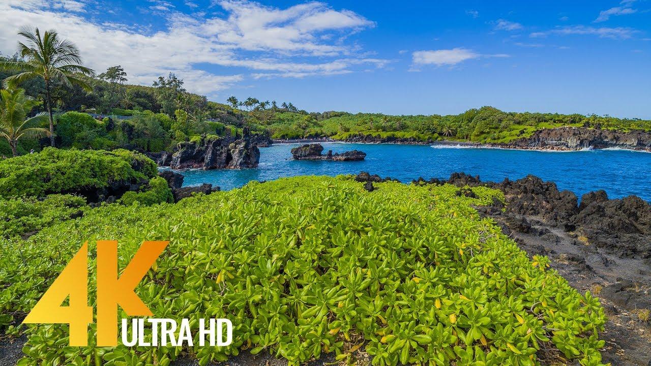 Maui Island, Hawaii - 4K Nature Documentary Film - Part #2