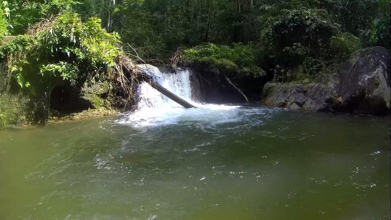 Air Terjun Gunung Berembun Pantai Negeri Sembilan Waterfall Travel Vlog Youtube