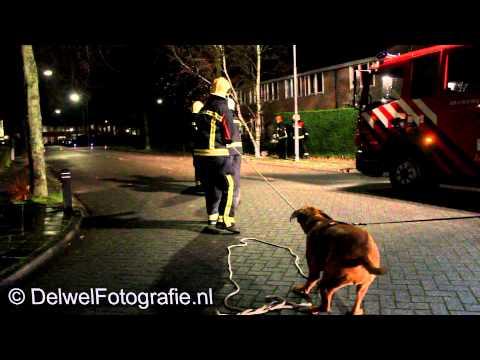 25-11-2012 Hond Schiet Brandweer Harderwijk Te Hulp Bij Stormschade