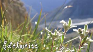 Edelweiss sung by Beth