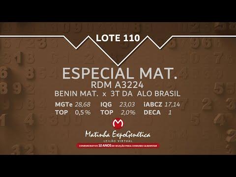 LOTE 110 MATINHA EXPOGENÉTICA 2021