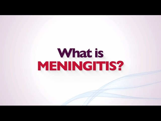Meningitis: Meaning, Symptoms, and Treatment