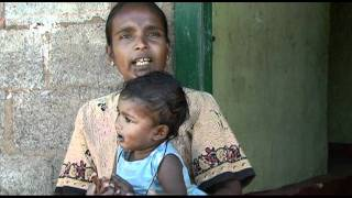 Reducing malnutrition in tea-picking families in Sri Lanka