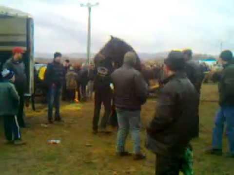 Zi de târg la HUMULESTI - Fair Day (Targu Neamt, Romania, 2011) from YouTube · Duration:  6 minutes 17 seconds