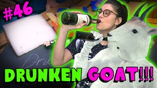 Drunken Goat!! - #46