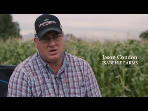 Farming in Boulder County, Colorado - Part 1