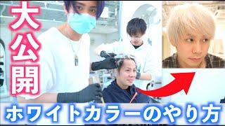 【ホワイトカラー】ダメージギリギリの髪を白くするレシピ大公開!!!