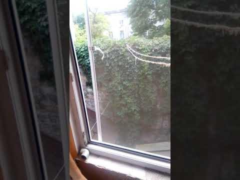 Зняли квартиру в центрі Одеси