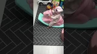 육아일기[23] 연아 생후 13개월