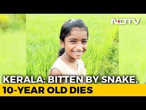 Kerala Girl,10, Dies Of Snakebite In Class, School Allegedly Ignored Injury