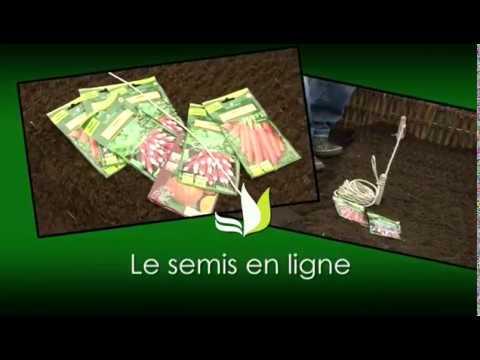 Le Semis En Ligne Jardineries Truffaut Tv