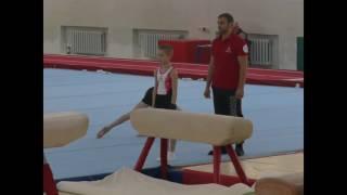 Спортивная гимнастика 2016г. III разряд