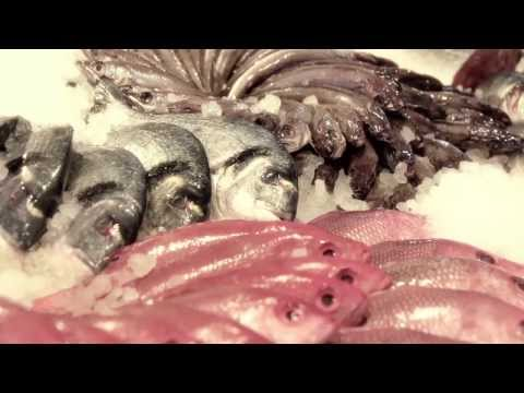 RubyTFO - Pelican Fishery And Grill