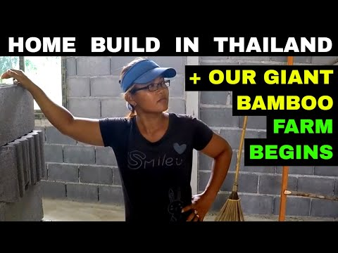 THAI HOUSE BUILD UPDATE & OUR TAIWAN BAMBOO FARM BEGINS Rural life Thailand Homestead THAI VLOG
