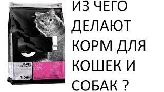 Из чего делают корм для кошек и собак ?