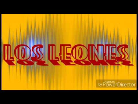 Los leones(características, vida,origen etc)