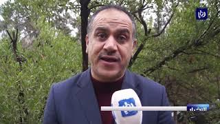 وزير الزراعة: الأردن لم يعد يستورد الأسماك النهرية - (11/1/2020)