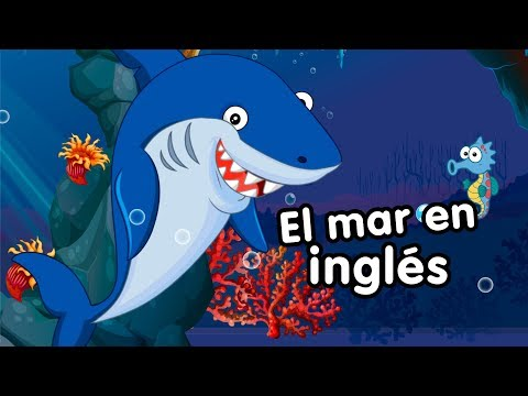 El mar en inglés Canciones Infantiles