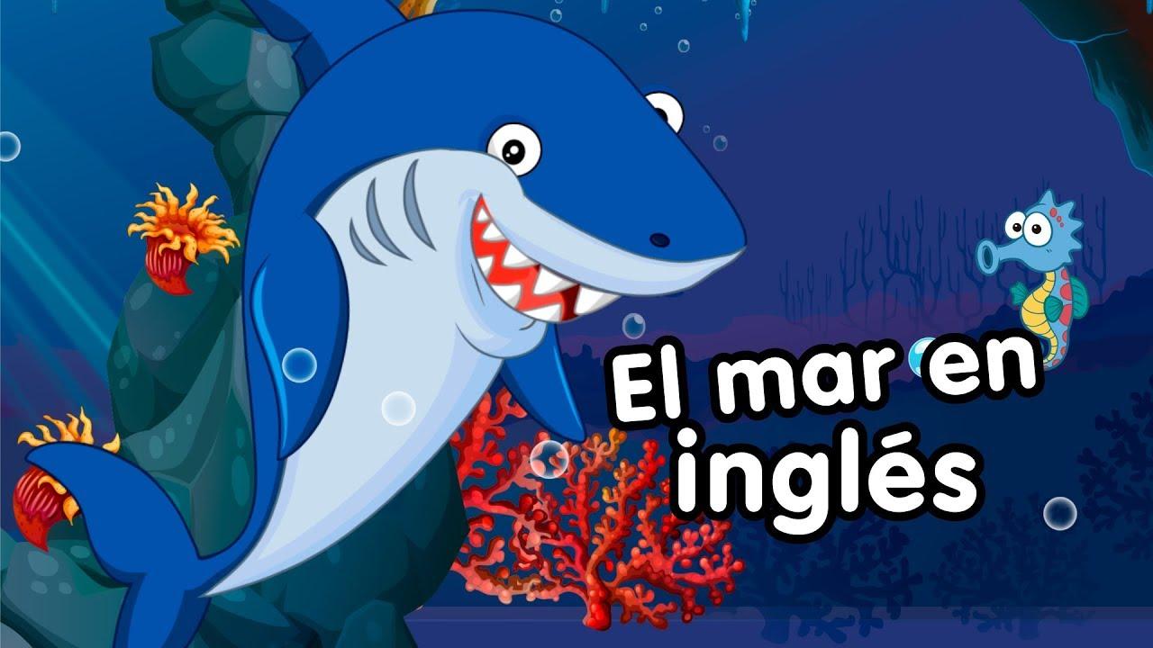 Animales Del Mar En Inglés Canciones Infantiles Youtube