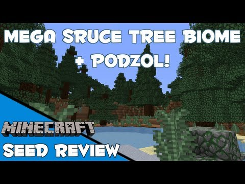 MEGA SPRUCE TREE BIOME + PODZOL AT SPAWN! - Minecraft 1.7