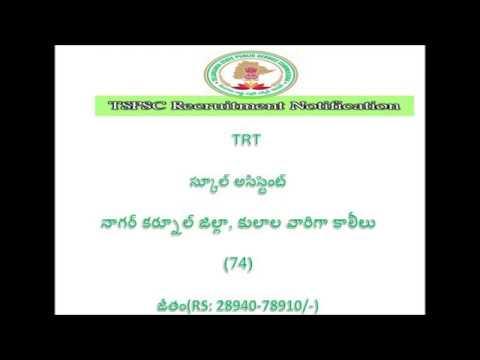 TSPSC TRT NAGARKURNOOL CATEGORY WISE VACANCIES(74)