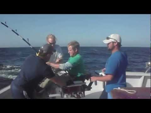 Harpooning tuna off chatham ma doovi for Kite fishing for tuna