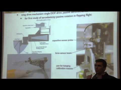 Challenges for 100 milligram flight