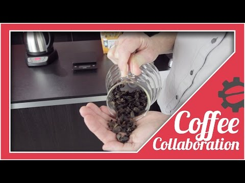 How To Make A Cascara Latte At Home | Coffee Collaboration