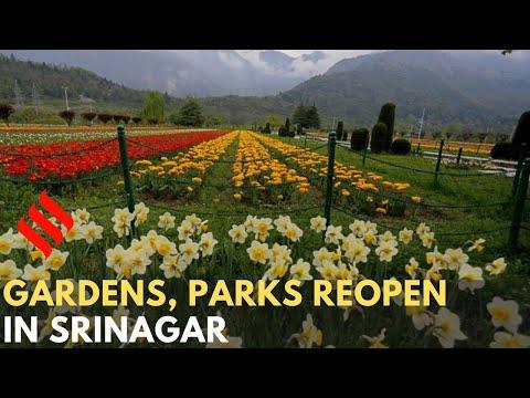 Unlock 2.0: Gardens, parks reopen in Srinagar, Jammu Kashmir