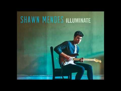 Ruin - shawn mendes (audio)