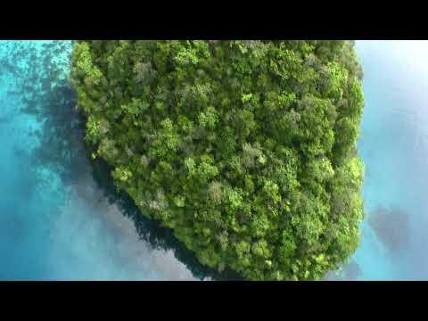 Palau Micronesia Helicopter Flight Paul Ranky HD Video