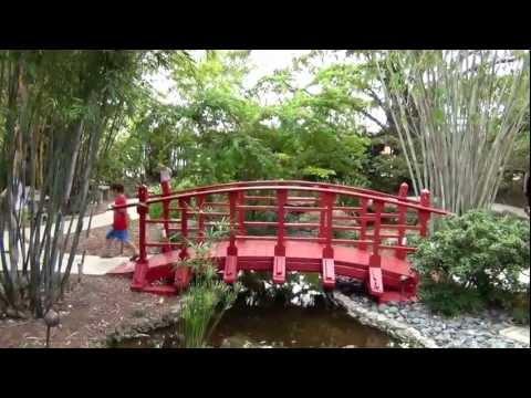Miami Beach Botanical Garden - YouTube