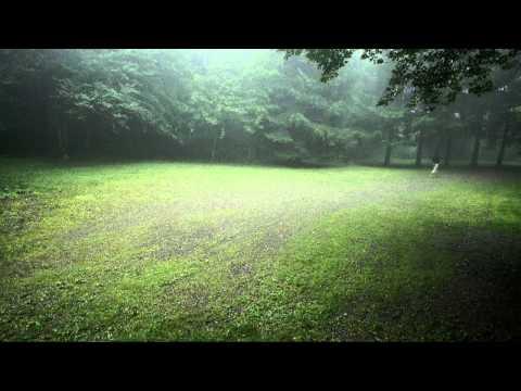 วันนี้เมื่อปีก่อน (Today, Last Year) - Moderndog Official Music Video