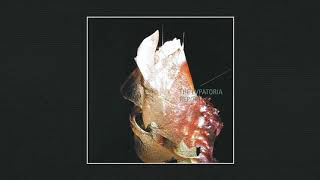 BEST ALBUMS | The Evpatoria Report – Golevka