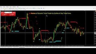 Dynamic Trend Trader Review by Cynthia