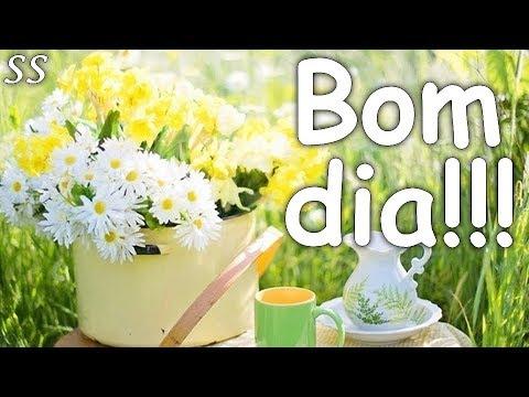 Bom Dia Mensagem Alegre Com Lindas Flores Whatsappfacebook